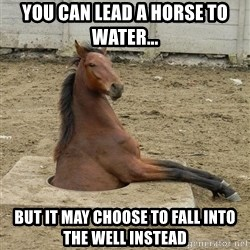 Hole Horse - You can lead a horse to water... but it may choose to fall into the well instead