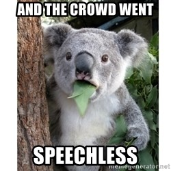 surprised koala - And the crowd went Speechless