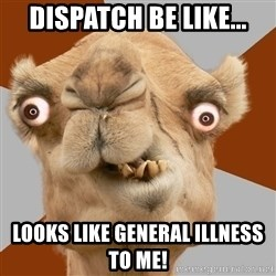 Crazy Camel lol - Dispatch be like... Looks like general illness to me!