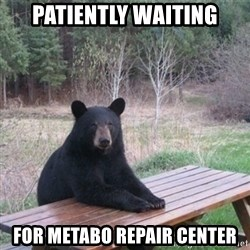 Patient Bear - Patiently waiting for metabo repair center