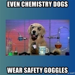 Chemistry Dog - even chemistry dogs wear safety goggles