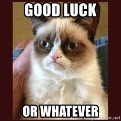 Tard the Grumpy Cat - Good luck Or whatever