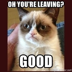 Tard the Grumpy Cat - oh you're leaving? good