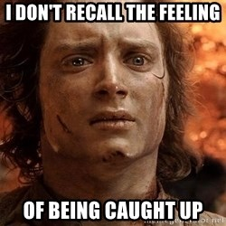 Frodo  - I don't recall the feeling of being caught up
