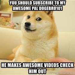 so doge - you should subscribe to my awesome pal dogebro101 he makes awesome videos check him out