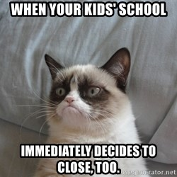 Grumpy cat good - When YOUR kids' school Immediately decides to close, too.