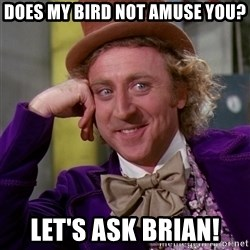 Willy Wonka - does my bird not amuse you? let's ask Brian!