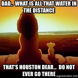 simba mufasa - Dad..  What is all that water in the distance That's Houston dear...  Do not ever go there