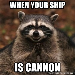 evil raccoon - WHEN YOUR SHIP  IS CANNON