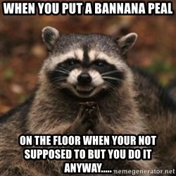 evil raccoon - when you put a bannana peal on the floor when your not supposed to but you do it anyway.....