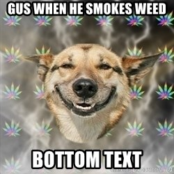 Stoner Dog - gus when he smokes weed bottom text