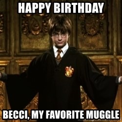 Harry Potter Come At Me Bro - Happy Birthday Becci, my favorite muggle