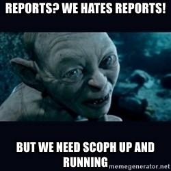 gollum - Reports? We hates reports! but we need SCOPH UP and RUNNING