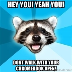 Lame Pun Coon - Hey you! Yeah YOU! Dont walk with your Chromebook open!