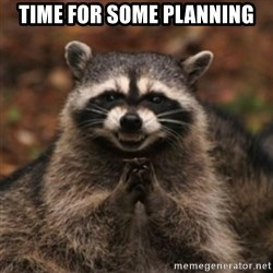 evil raccoon - Time for some planning