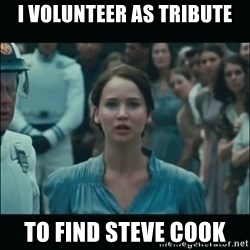 I volunteer as tribute Katniss - I volunteer as tribute to find Steve Cook