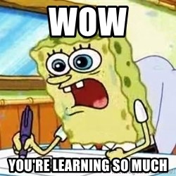 Spongebob What I Learned In Boating School Is - WOW You're learning so much