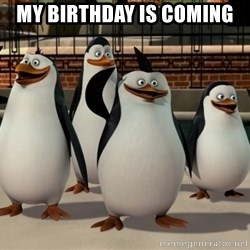 Madagascar Penguin - My birthday is coming