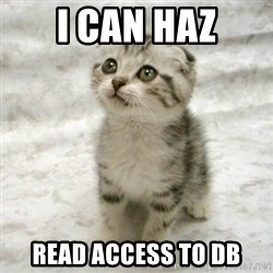 Can haz cat - i can haz read access to db