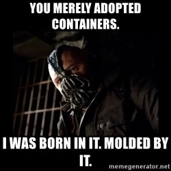 Bane Meme - You merely adopted containers. I was born in it. Molded by it.