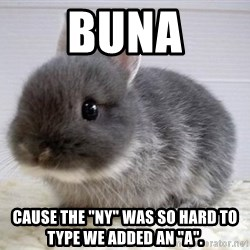 "ADHD Bunny - BUNA Cause the ""NY"" was so hard to type we added an ""A""."
