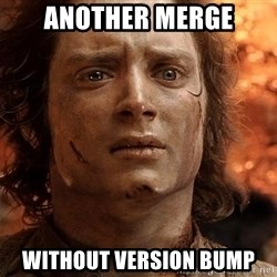 Frodo  - another merge without version bump