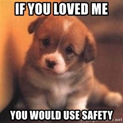 cute puppy - if you loved me  you would use safety