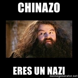 You're a Wizard Harry - Chinazo eres un nazi