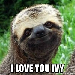 Sarcastic Sloth - I love you ivy