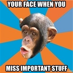 Stupid Monkey - Your Face When You Miss Important Stuff