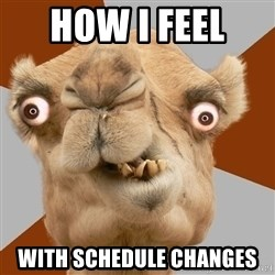 Crazy Camel lol - How I feel  with schedule changes
