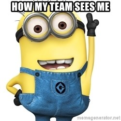 Despicable Me Minion - How my team sees me