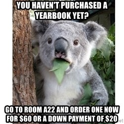 surprised koala - You haven't purchased a yearbook yet? Go to room a22 and order one now for $60 or a down payment of $20