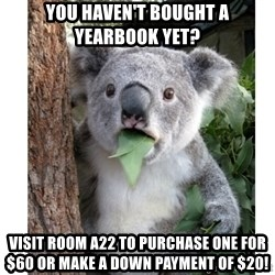 surprised koala - You haven't bought a yearbook yet? visit room a22 to purchase one for $60 or make a down payment of $20!