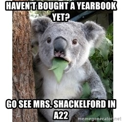 surprised koala - Haven't bought a yearbook yet? Go see mrs. shackelford in a22