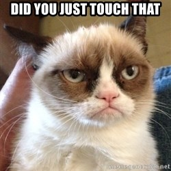 Grumpy Cat 2 - did you just touch that