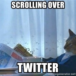 newspaper cat realization - SCROLLING OVER TWITTER