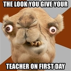 Crazy Camel lol - the look you give your  teacher on first day
