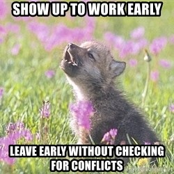Baby Insanity Wolf - Show up to work early Leave early without checking for conflicts