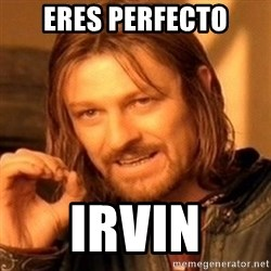 One Does Not Simply - eres perfecto irvin
