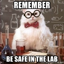 Science Cat - Remember Be safe in the lab