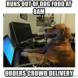 No Computer Idea Dog - runs out of dog food at 8am orders crowd delivery
