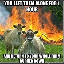 Evil Cows - you left them alone for 1 hour and return to your whole farm burned down