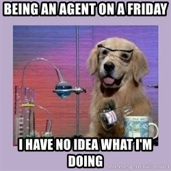 Dog Scientist - Being an agent on a Friday I have no idea what I'm doing