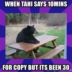 waiting bear - when tahi says 10mins  for copy but its been 30
