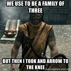 skyrim whiterun guard - We use to be a family Of three But then i took and arrow to the knee