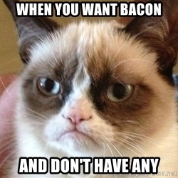 Angry Cat Meme - WHEN you want bacon and don't have any