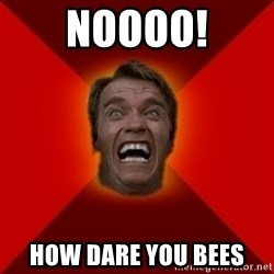 Angry Arnold - NOOOO! HOW DARE YOU bEES