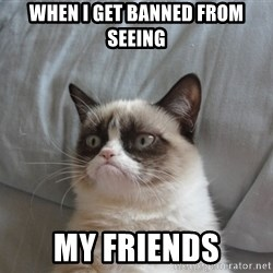 Grumpy cat good - when i get banned from seeing my friends