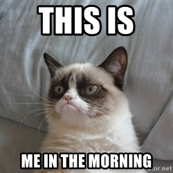 Grumpy cat good - this is  me in the morning